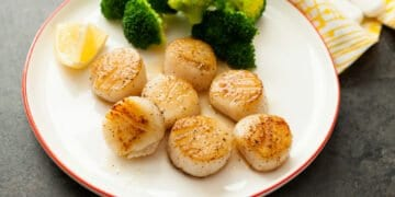 How To Cook Scallops At Home?