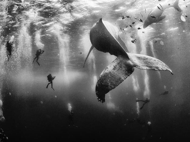 2015-national-geographic-traveler-photo-contest