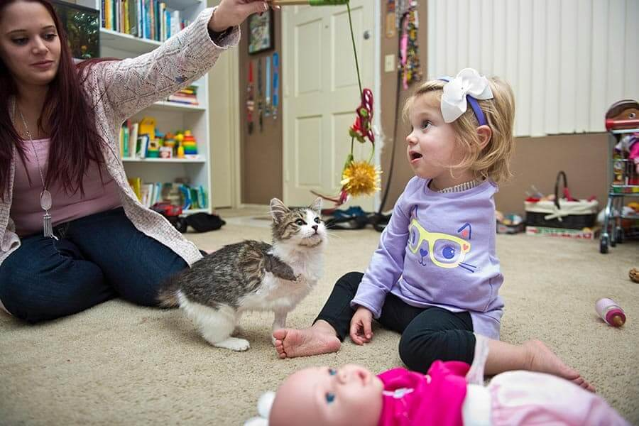 Little Girl Who Lost Her Arm To Cancer Receives A Three-Legged Kitten As Christmas Gift