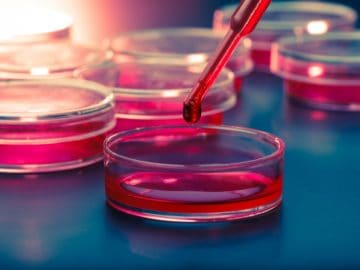 Facts About Stem Cell Technology